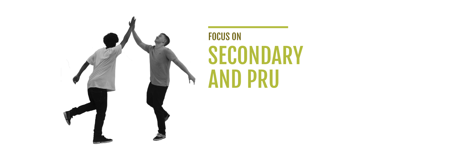 secondary-pru